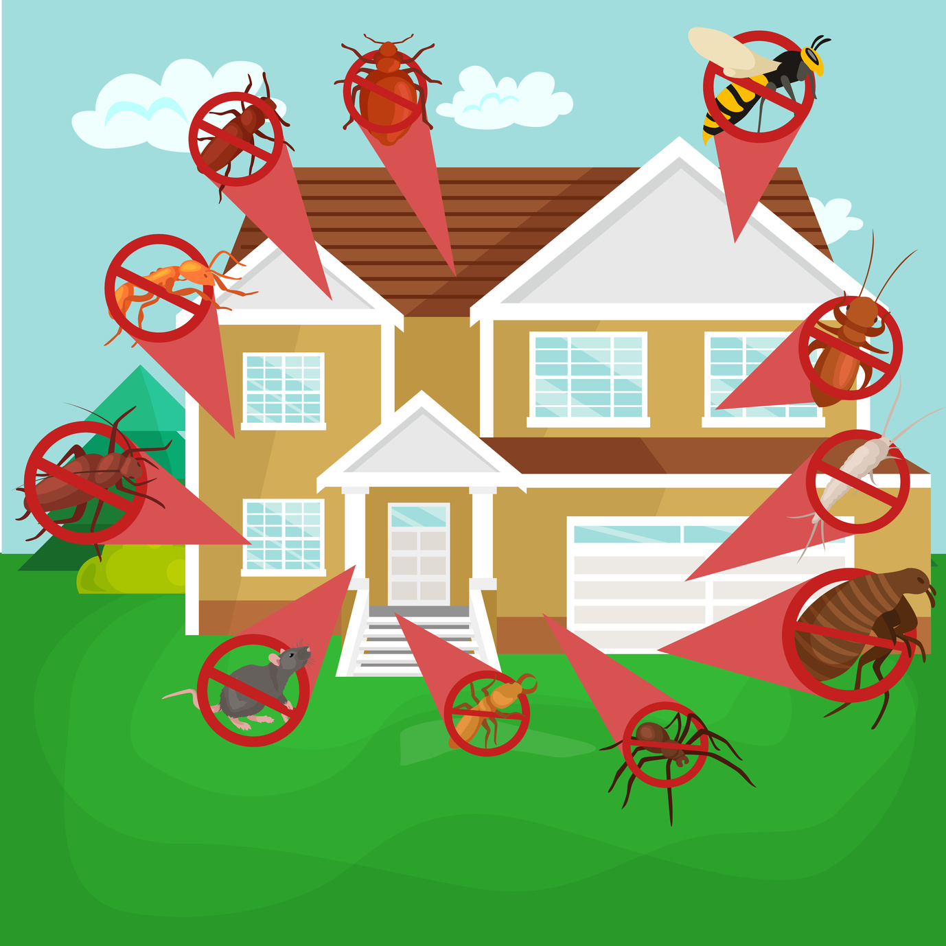 Effective pest and termite treatment in Rustenburg, Brits, Hartbeespoort (Harties), Pretoria and Johannesburg areas